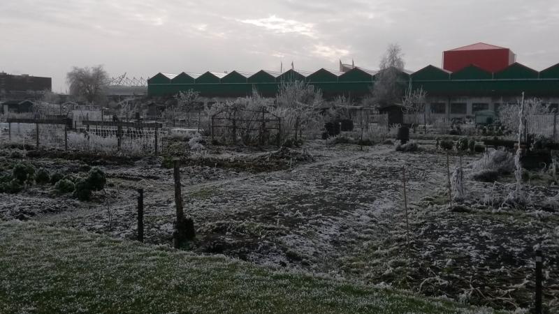 wintertuin-januari-2017