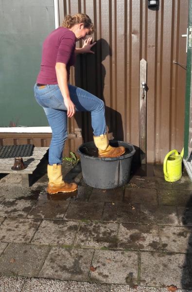 Laatste himmeldei 2016. Vieze laarzen, zo weer schoon.