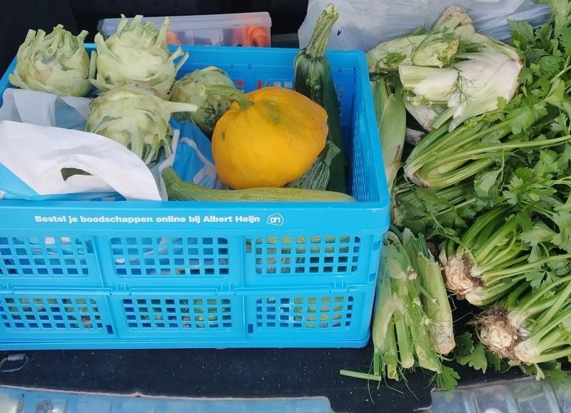 augustus 2019 verse groenten voor de voedselbank
