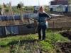 Een paar violen verhuizen naar de tuin Geeske (tuin 68)
