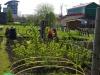 Tuin nummer 87 op 1 mei 2013