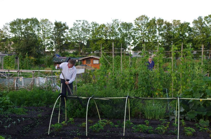 2013-08-08-ronde-door-de-volkstuinvereniging-hveen-084
