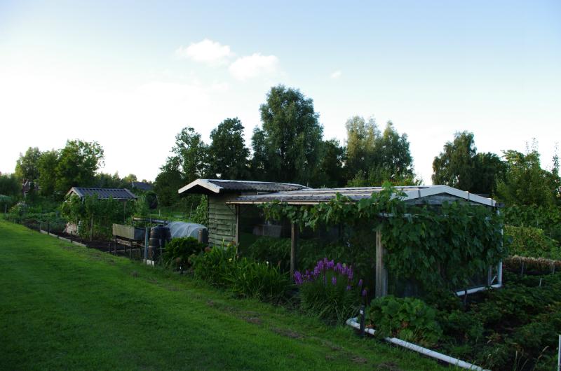 2013-08-08-ronde-door-de-volkstuinvereniging-hveen-086
